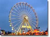 A larger version, sightseeing version of the Ferris Wheel available on request for your event. Equally suited as a standalone attraction for city centres and tourist destinations.